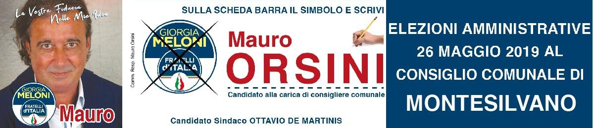 Banner orsini
